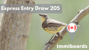 express entry draw 205