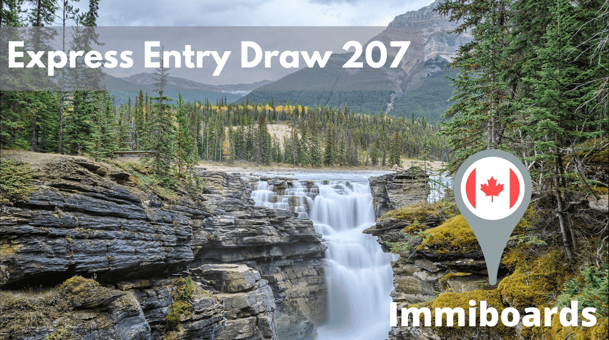 express entry draw 207